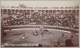 Bull fighting, City of Mexico