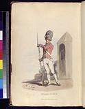 Grenadier of the 1st Regiment of Guards