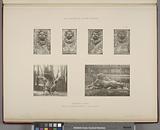 Mascaron du buffet, dragon du bassin du plafond, – Face et profil