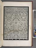 Specimen of Honiton lace by Mrs Treadwin of Exeter