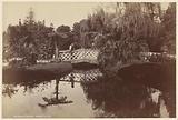 Botanical Gardens, Sydney, NSW