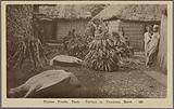 Native foods, taro, turtles & yangona roots