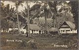 Native huts, Rarotonga