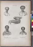Tonga-Tabou, 1, Naou, jeune Fille, 2, Natuf de Conga habitant des îles Viti, 3, Houïtai, chef chrétien à Mafanga