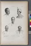 Moluques, 1, César jeune papou de Gilolo, 2, Urydag, (Vendredi.), 3, Chinos d' Amboine, 4, Oui-tian-soui chinois