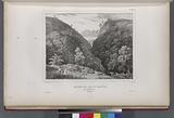 Ravins de Batou-Ganton, Prés d'Amboine, (Moluques.)