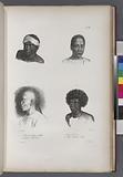 1. Cesar jeune Papou de Gilolo, 2, Kouranou, chef de Dorey, 3, Naturels de Dorey, 4, Chinois d'Amboine (Moluques.)