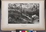 Moulin a scie, dans les bois d'hobart – town, (Van-Diemen.)