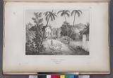 Églis a umata, Dans l' Ile de Guam, (Mariannes.)