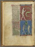 Two miniatures: Eve and the Serpent and Adam and Eve eating the apple, With text, initials, linefillers, placemarkers