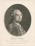 Louis Seize, Roi de France et de Navarre