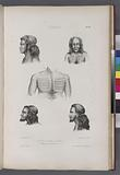 Tikopia, 1, 2, 3, 4, Portraits d' habitans de Tikopia, 5, Tatouage de la poitune