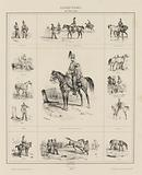Hobby by Victor Adam. Trumpets. 1st riding lesson. Horse maintenance. Manure. Full dress of the hussars. Pad.