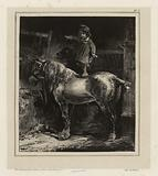 Little child standing on a horse