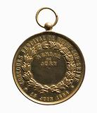 Medal of member of the jury at the Vitry-sur-Seine festival competition, 15 June 1884