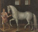 Spanish Warhorse