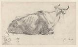 Recumbent Cow Facing Right, with Fragment of a Cow's Head