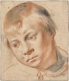 Study of a Boy's Head