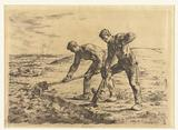 Two farmers dig the soil of a field
