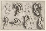 Studies of ears