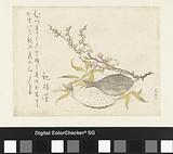 Two fishes and a plum blossom branch