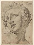 Head of a son of Laocoön