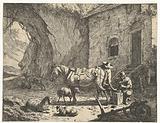 Horse is shod by farrier in yard