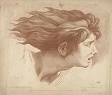 Head of man with flowing hair