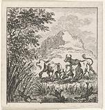 Fable of the bulls in battle