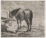 Standing horse and lying calf near a pole