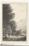 Barnyard with tall trees