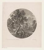 Landscape with truncated tree in the foreground