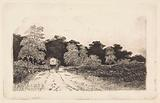 Covered wagon on a road in Driebergen