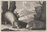Landscape with wild boar and porcupine