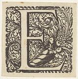 Letter E in a frame with the cornucopia