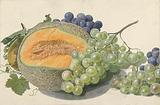 A Melon, Bunches of Grapes, a Peach and Hazelnuts