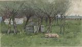 Barnyard with lying pig