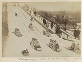 Sledging children of the Tuque Blue on a hill in Montreal (Canada)