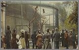 Amsterdam – Monkey cage in Artis