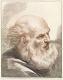 Head of old man with beard