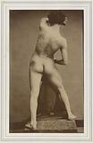 Male academic nude, seen from the back