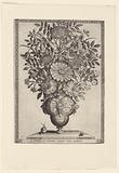 Polyptoton de Flore (The Variance of Flowers)