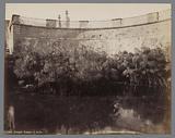 Siracusa, Fontana di Arathusa