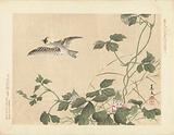 Bird flying away at creeper with pink flowers