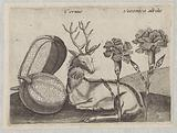 Series of Prints with Flowers and Animals in a Landscape
