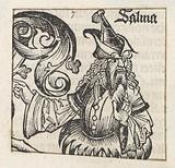 Sammua
