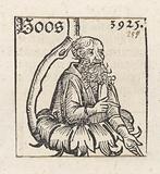 Boaz (IV)