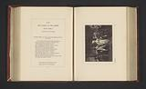 Photo reproduction of a print after a painting by Francis Wheatley, depicting a scene from The Taming of the Shrew by …