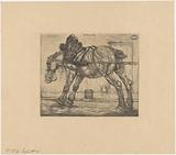 Draft horse with oat bag