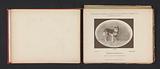 German Shepherd Stubble Hopper who won a first prize at the Internationale Ausstellung von Jagd und Luxus Hunden in 1891